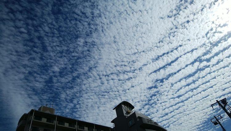 秋の雲は・・